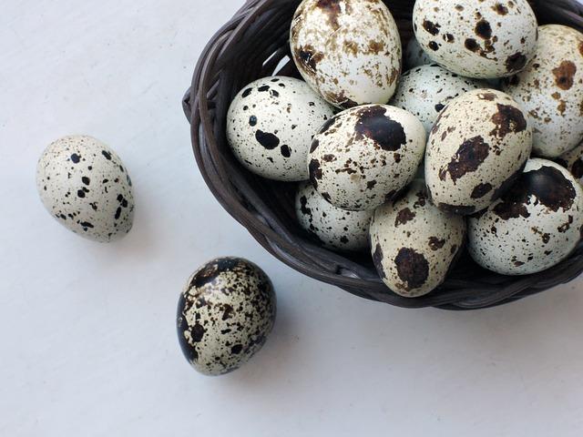 夢占いうずらの卵