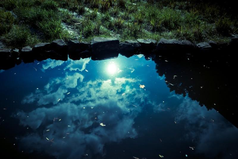 夢占い池が印象的