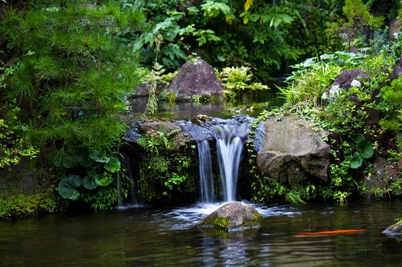 夢占い小さい池