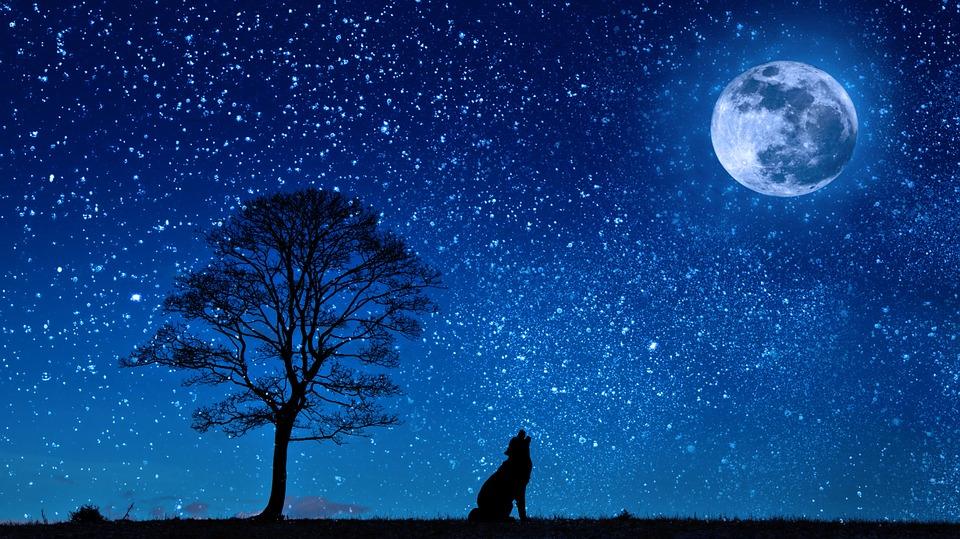 夜 星空 夢