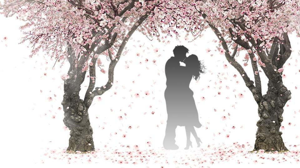 数秘術6の恋愛の特徴
