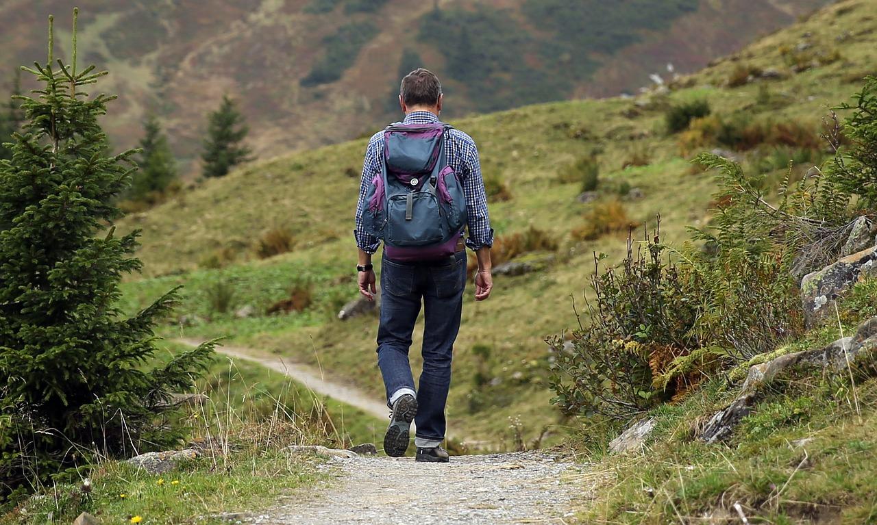 夢占い山の意味5:山道の夢