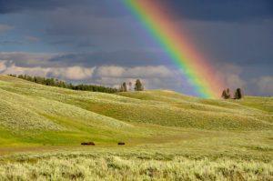 虹の状態・シチュエーションから見る夢占い
