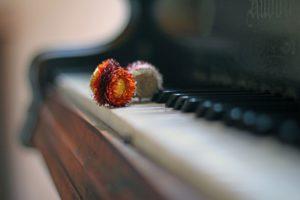楽器の音がキレイな夢占い