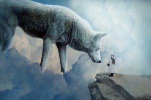 夢占い 動物