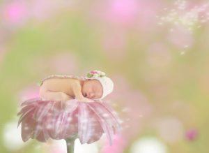 夢占い ピンク